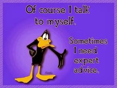 Daffy Duck seeks expert advice by talking to himself
